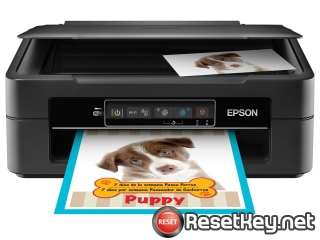 Reset Epson XP-241 printer with WICReset Utility Tool